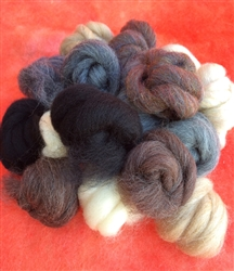 PacaFluff Wool Roving, Natural Colors--Medium